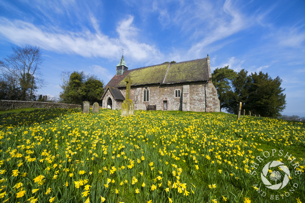 Sea of gold at Smethcote church