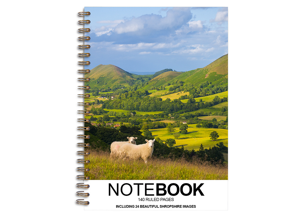 Notebooks and Address Books
