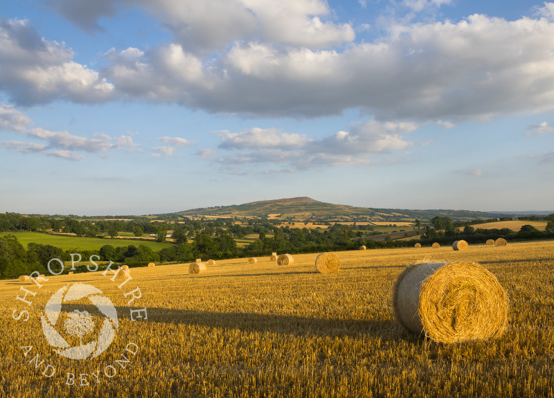 Straw bales at sunset on the slopes of Brown Clee with Titterstone Clee, Shropshire.