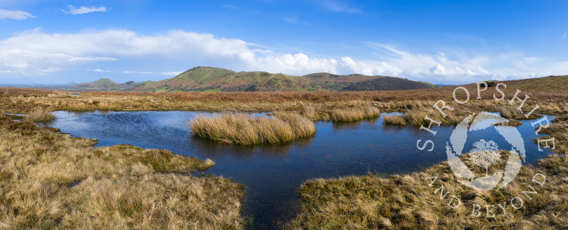 A panoramic view of  a pool on the Long Mynd with Caer Caradoc and the Lawley, Shropshire.