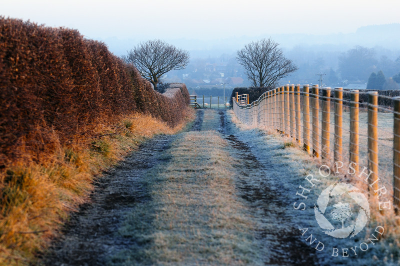 A frost-covered farm track at sunrise on Lodge Hill, Shifnal, Shropshire, England.