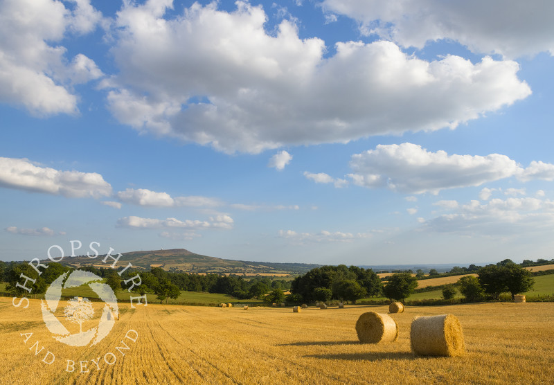 Straw bales on the slopes of Brown Clee with Titterstone Clee, Shropshire.