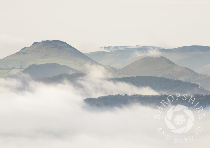 The Stretton Hills rising out of the mist, seen from the Wrekin, Shropshire.