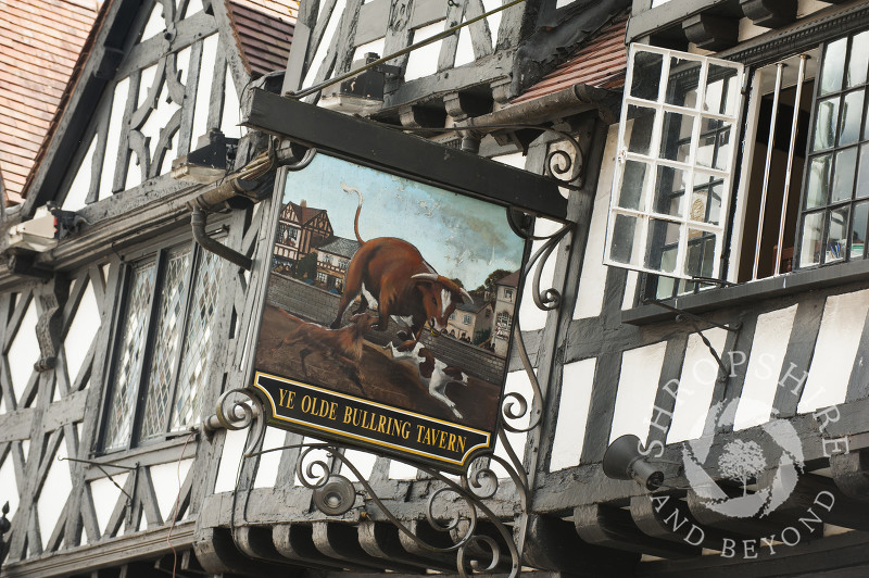 The sign outside Ye Olde Bull Ring Tavern in Ludlow, Shropshire, England.