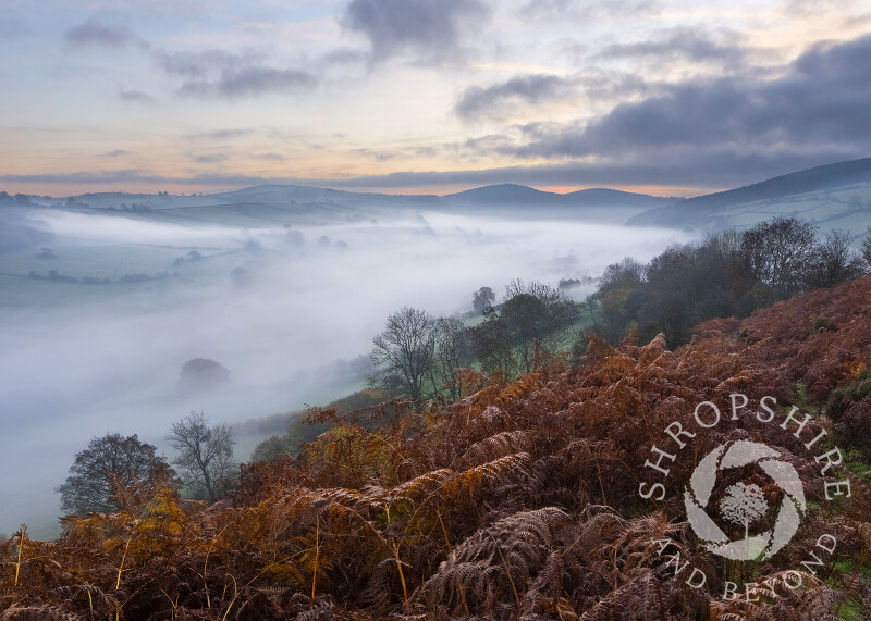 The Redlake Valley at Dawn in Shropshire, seen from Caer Caradoc.