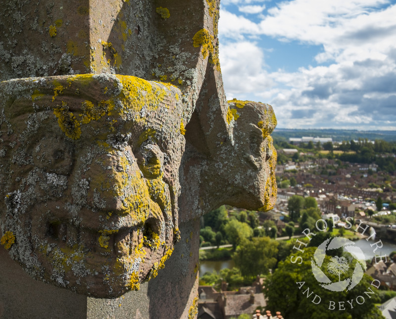 Lichen-covered stone carvings on the top of St Leonard's Church, Bridgnorth, Shropshire.
