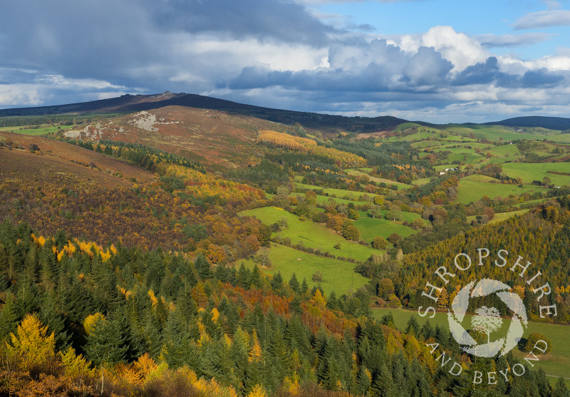 A view of the Shropshire countryside in autumn seen from Heath Mynd, with the Stiperstones on the horizon.
