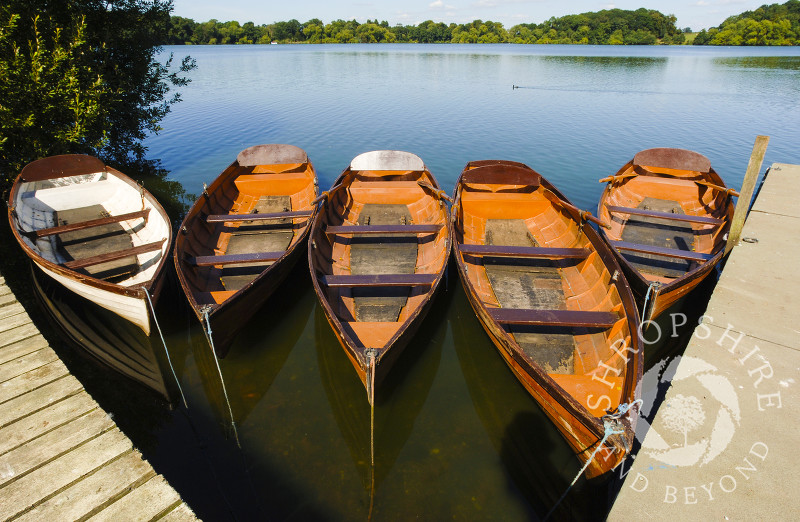 Rowing boats moored on the Mere at Ellesmere, Shropshire, England.