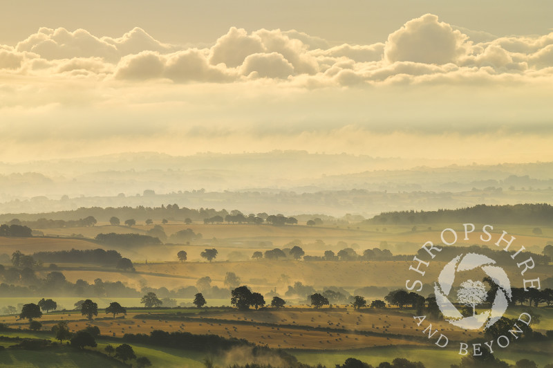 Early morning light on countryside near Cleobury North, seen from Brown Clee, Shropshire.