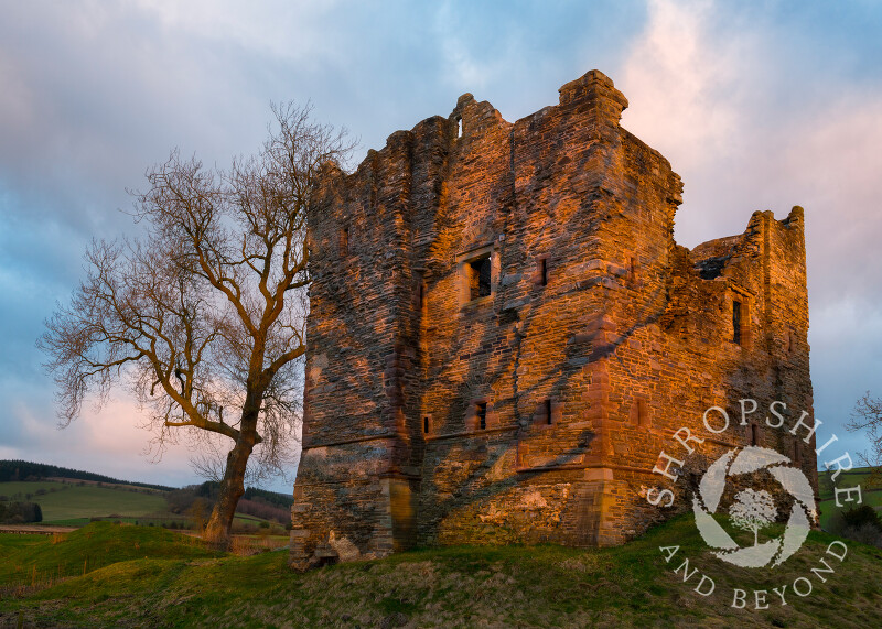 Sunrise at Hopton Castle, Shropshire.