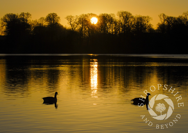 Sunrise over the Mere at Ellesmere, Shropshire, England.