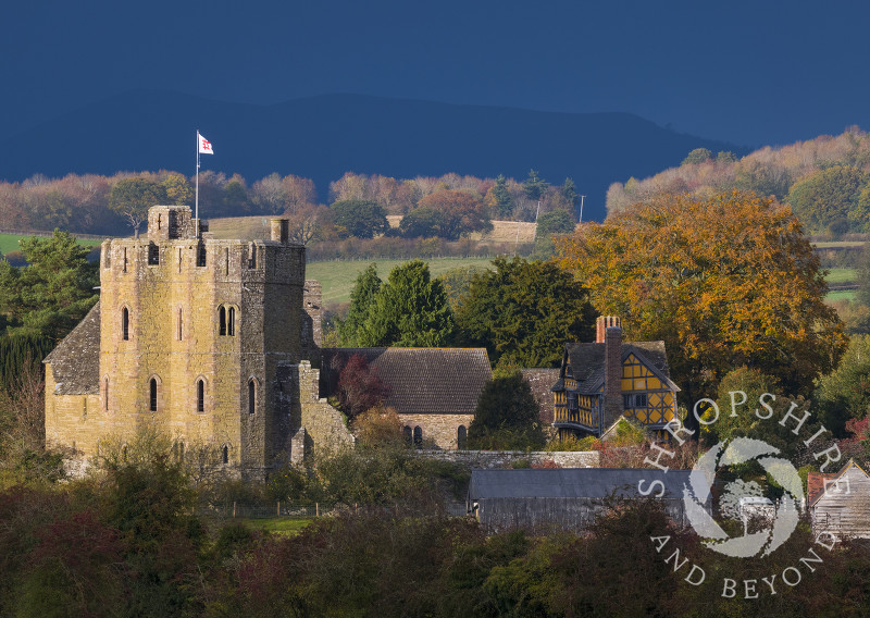 Autumn sunshine on Stokesay Castle with Ragleth Hill in the background, Shropshire.