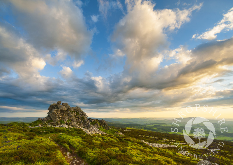 Evening light steals across Cranberry Rock on the Stiperstones, Shropshire, England.