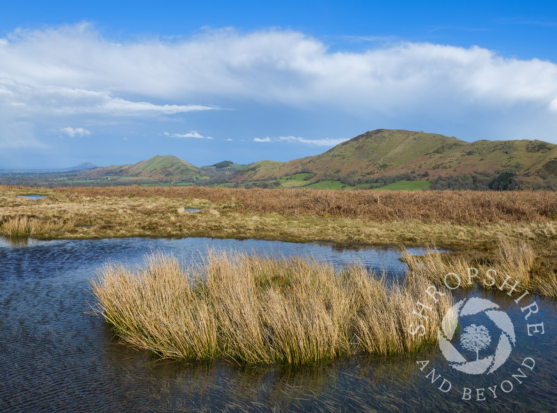 A pool on the Long Mynd with Caer Caradoc and the Lawley, Shropshire.