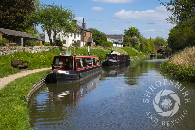 Canal boats moored on the Whitchurch arm of the Llangollen Canal in Shropshire.