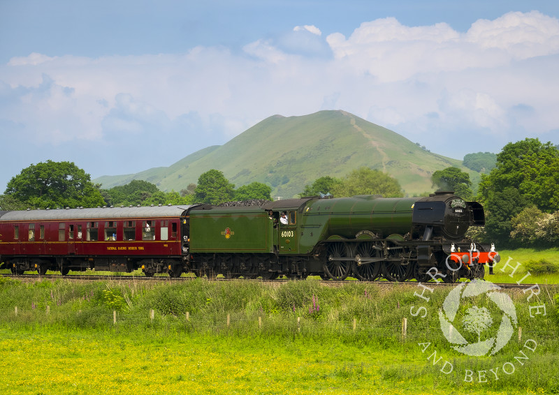 The Flying Scotsman pulls the Cathedrals Express past the Lawley in the Shropshire Hills near Church Stretton, Shropshire.