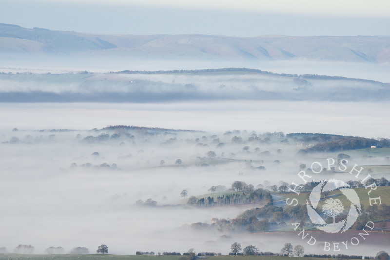 A layer of mist covers the south Shropshire countryside, with the Long Mynd in the distance, seen from Titterstsone Clee.