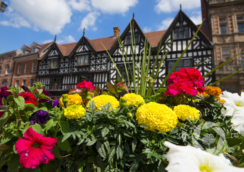 Summer flowers in High Street, Shrewsbury, Shropshire, England.