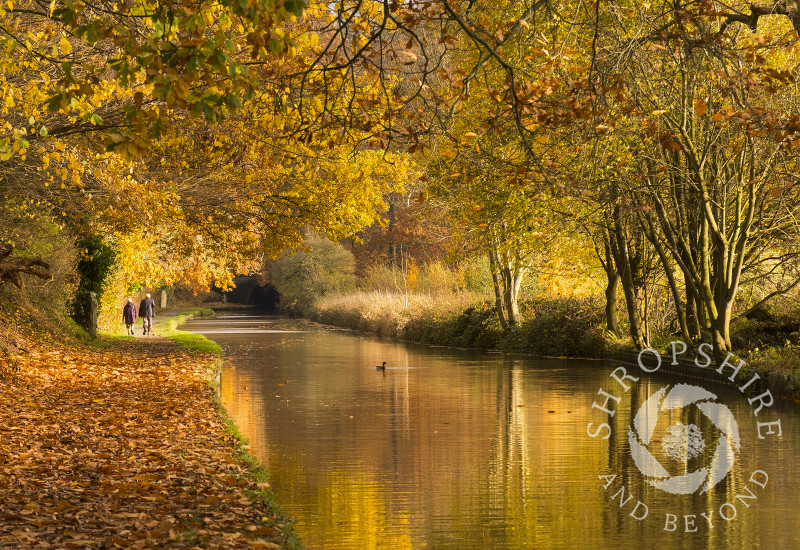 Autumn reflections on the Llangollen Canal at Ellesmere, Shropshire.