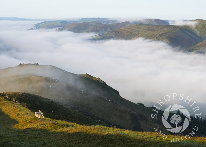 Early morning fog over Church Stretton, seen from Caradoc, Shropshire.