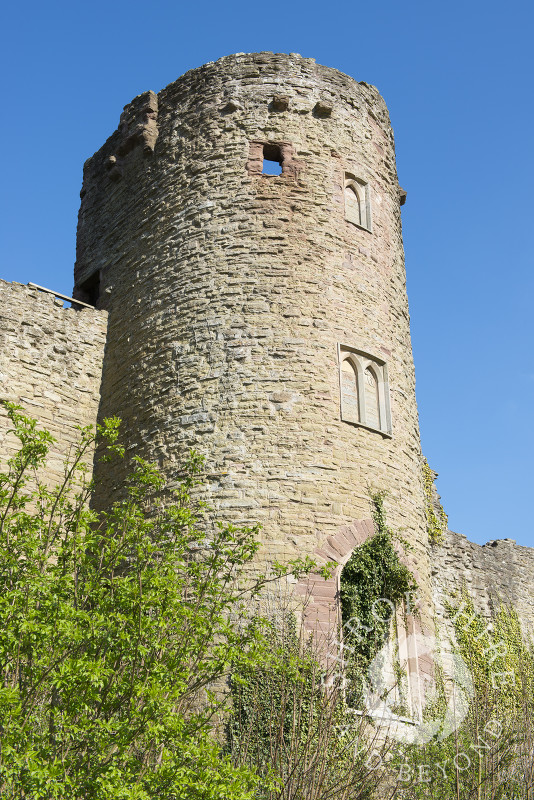 Mortimer's Tower at Ludlow Castle in Shropshire.