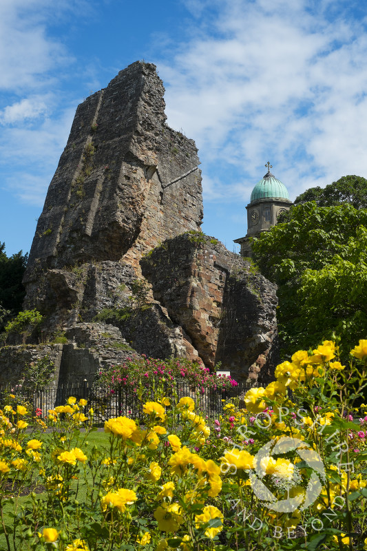 The castle ruins and the tower of St Mary's Church seen from Castle Gardens in Bridgnorth, Shropshire.