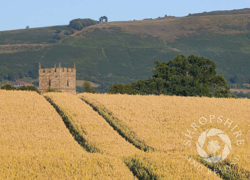 Holy Trinity Church at Holdgate, overlooked by Brown Clee Hill, Shropshire.