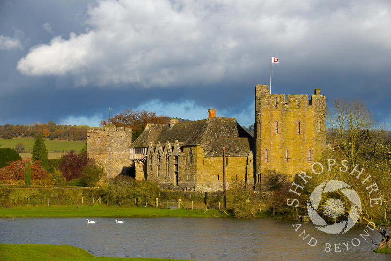 Autumn colour as swans glide past the fortified medieval manor house of Stokesay Castle and the Church of St John the Baptist, Shropshire, England.