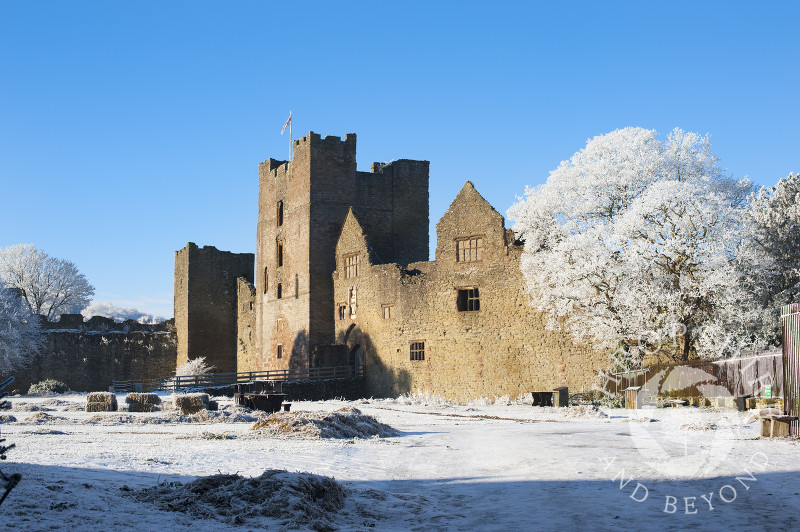 The grounds of Ludlow Castle under a layer of hoar frost, Shropshire, England.