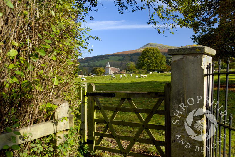 Looking over a gate towards St Mary's Church and Titterstone Clee Hill at Bitterley, near Ludlow, Shropshire, England.