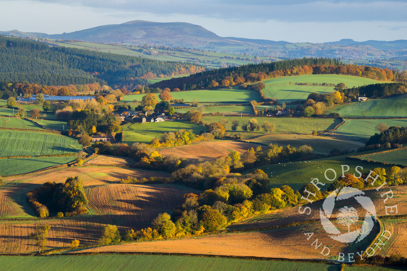 Fields at sunrise in the Clun Valley, Shropshire, with Corndon Hill and Bromlow Callow seen in the distance.