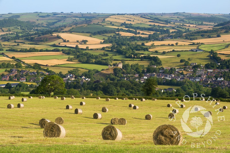 Field of hay bales above the town of Clun, Shropshire.
