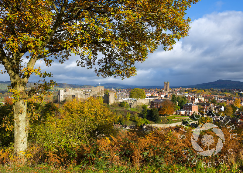 The market town of Ludlow in autumn, seen from Whitcliffe Common, Shropshire, England.