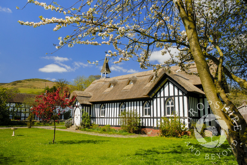 All Saints' Church in spring, Little Stretton, Shropshire.