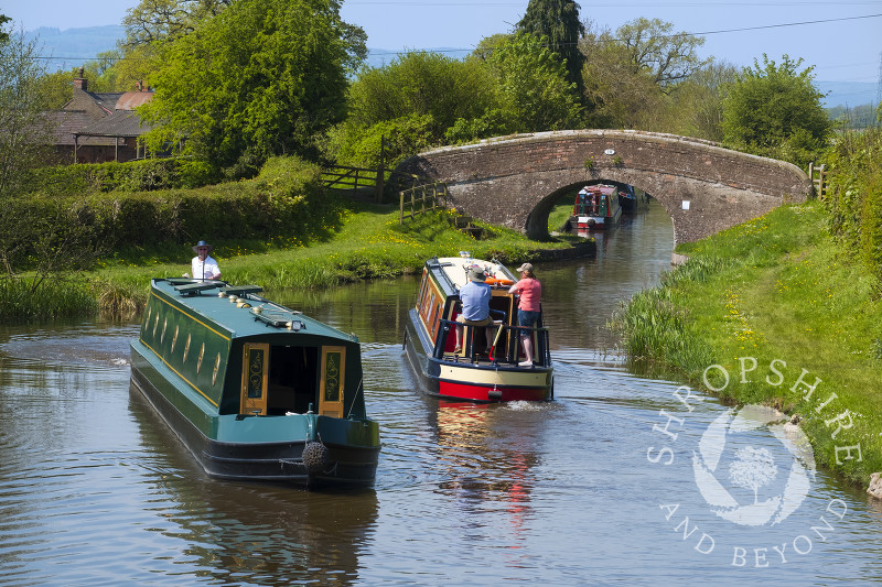 Canal boats on the Llangollen Canal at Lower Frankton, Shropshire.