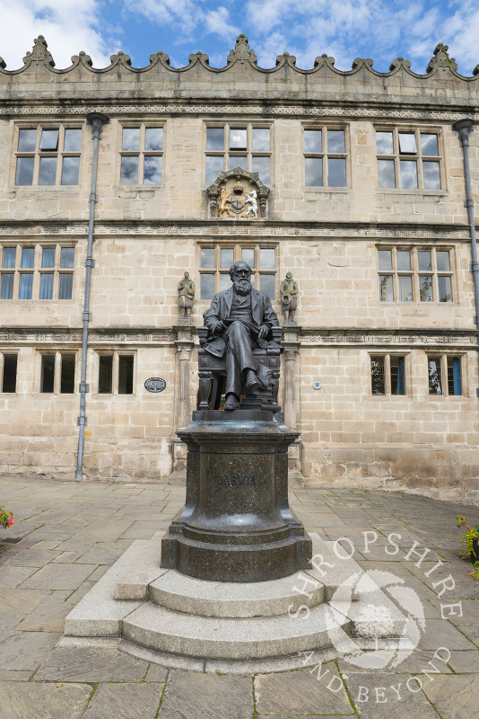 Statue of Charles Darwin outside the library in Shrewsbury, Shropshire, England.