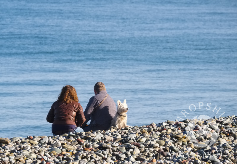 A man, woman and dog sit on the beach at Llandudno, Conwy, Wales.