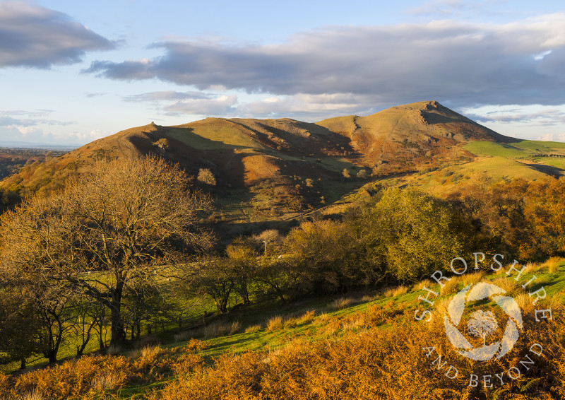 Evening light on Caer Caradoc, seen from Hope Bowdler Hill, Shropshire.