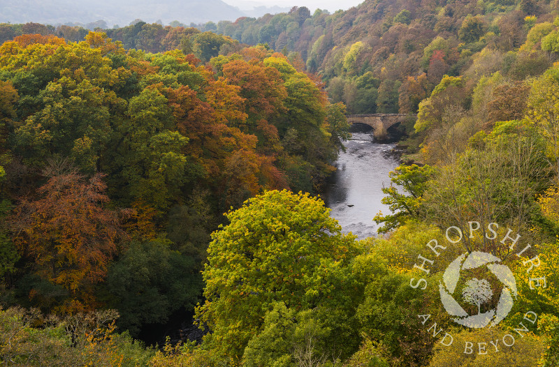 The River Dee winds through autumnal woodland seen from Pontcysyllte Aqueduct, near Wrexham, Wales.