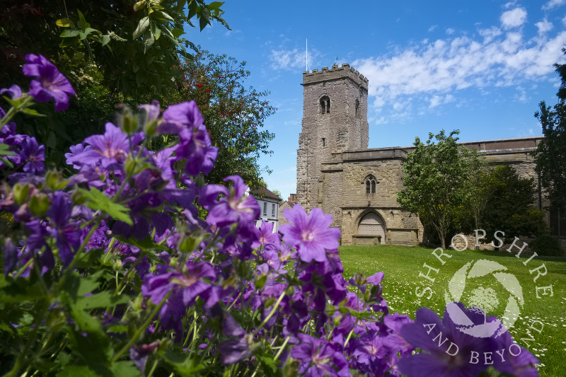 Flowers grow in front of the Holy Trinity Church in Much Wenlock, Shropshire, England.
