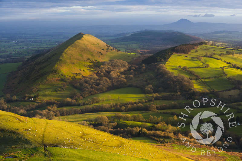 The Lawley seen from Caer Caradoc, with the Wrekin on the horizon, Shropshire.