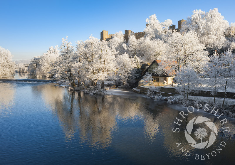 Ludlow Castle and trees covered in hoar frost reflected in the River Teme at Ludlow, Shropshire.