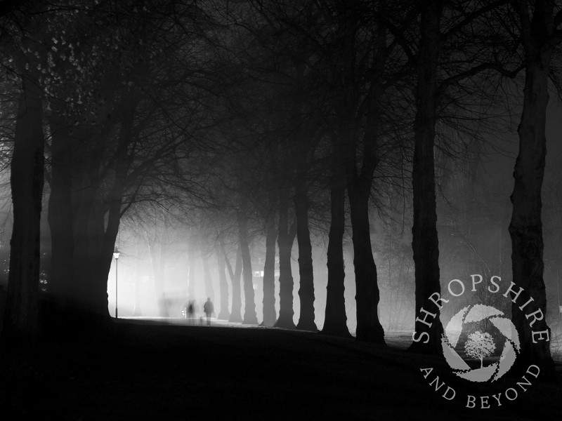 Ghostly figures walking in the Quarry, Shrewsbury, Shropshire, England.