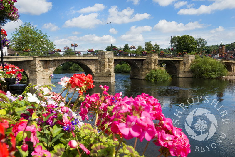 Flowers on Quayside beside the River Severn at Bridgnorth, Shropshire.