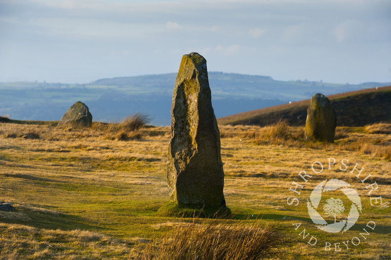 Evening sunlight on Mitchell's Fold stone circle, Stapeley Hill, near Priest Weston, Shropshire.