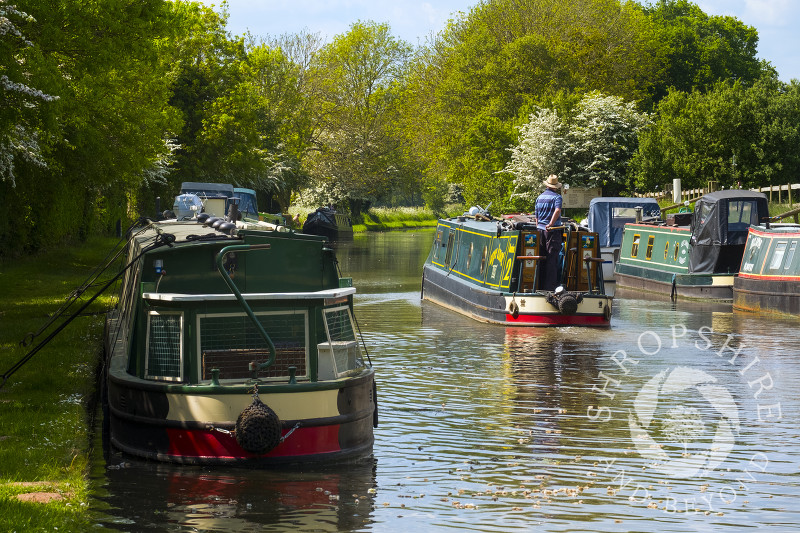 Narrowboats on the Shropshire Union Canal near Goldstone Wharf, Cheswardine, Shropshire.