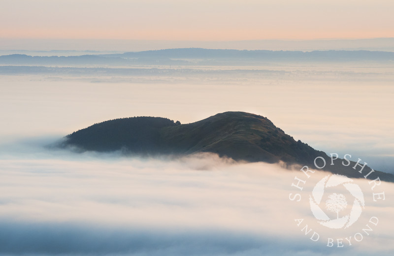 Earl's Hill and Pontesford Hill rise above the early morning mist, Shropshire.