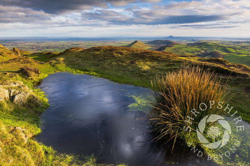 Early morning light picks out a frozen pool on the summit of Caer Caradoc, Shropshire.