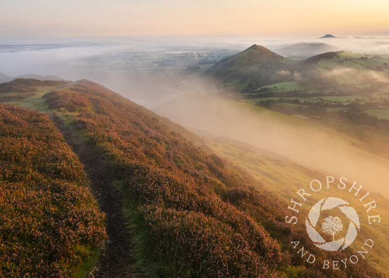 A path along the ramparts on Caer Caradoc, with the Lawley and the Wrekin amid the mist.