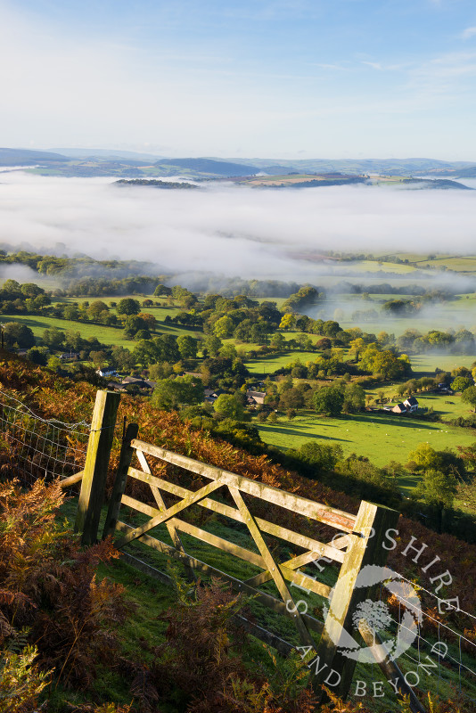 South Shropshire countryside under a blanket of mist, seen from the Long Mynd, England.